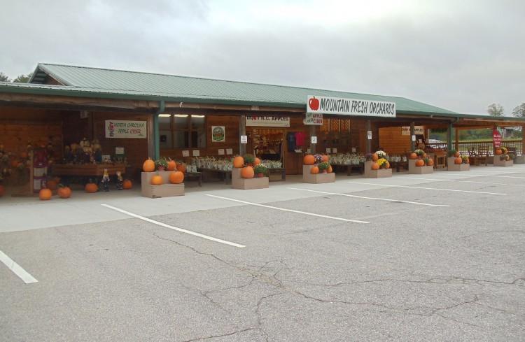front-pumpkins