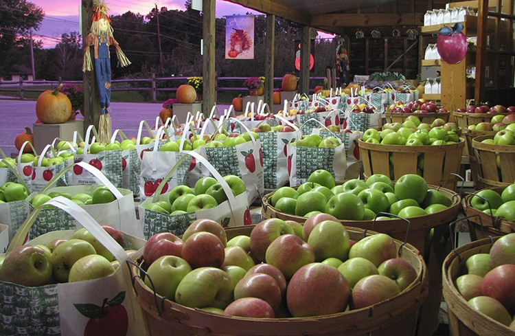home-fresh-apples-750×489