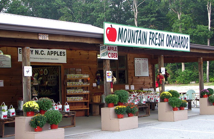 Mountain Fresh Orchards Hendersonville Nc Apple Orchard