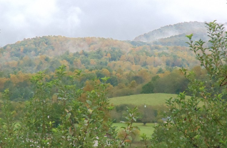 mountain-fresh-orchards-valley